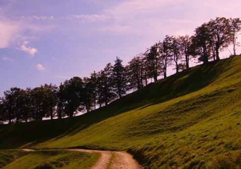 RealWorld-Landschaft