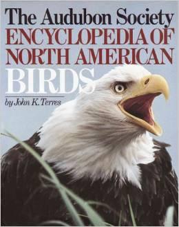 BirdDay-book