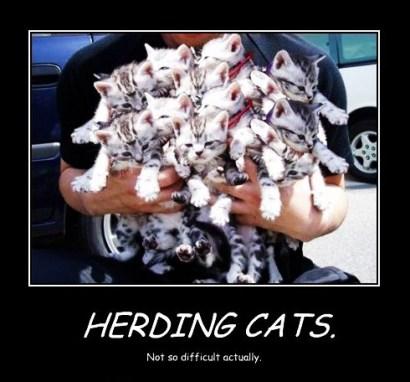 HerdingCats-01