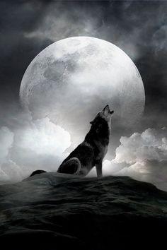 moon-02